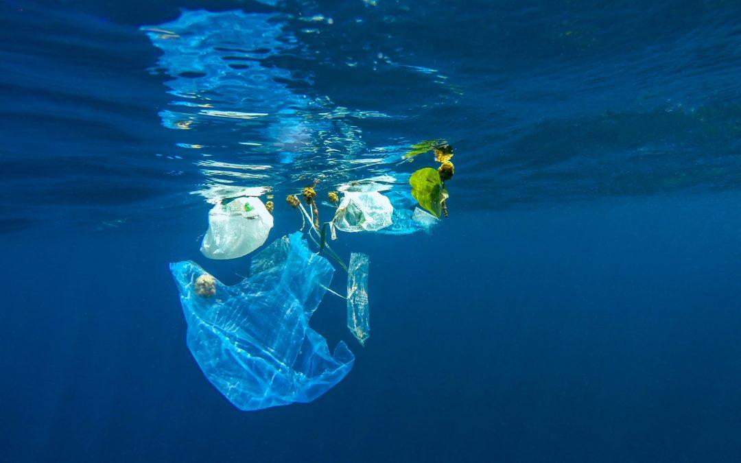 [Information] Les sacs plastiques biodégradables sont-ils une solution écologique pour la France ?